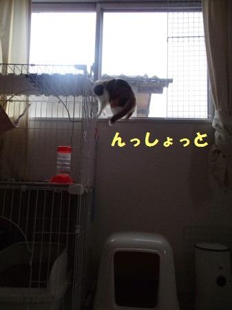20130929_87.jpg
