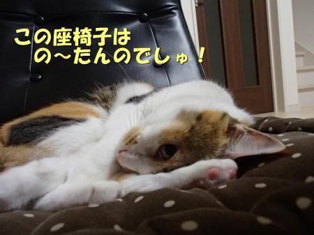 20131013_94.jpg