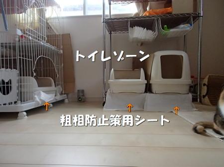20131019_29.jpg