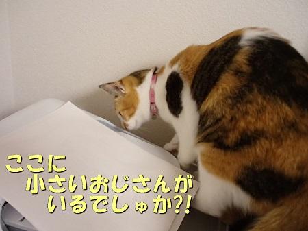 20131105_91.jpg