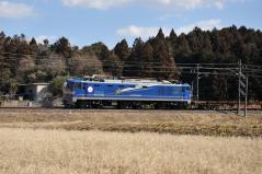 EF510-500_247
