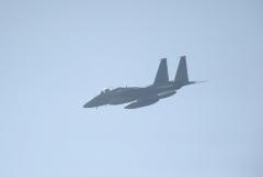 Hyakuri AB_F-15J_195