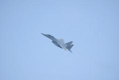 Hyakuri AB_F-15DJ_34