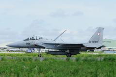 Hyakuri AB_F-15DJ_18