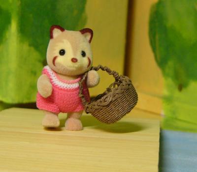 アライグマ赤ちゃんのおつかい