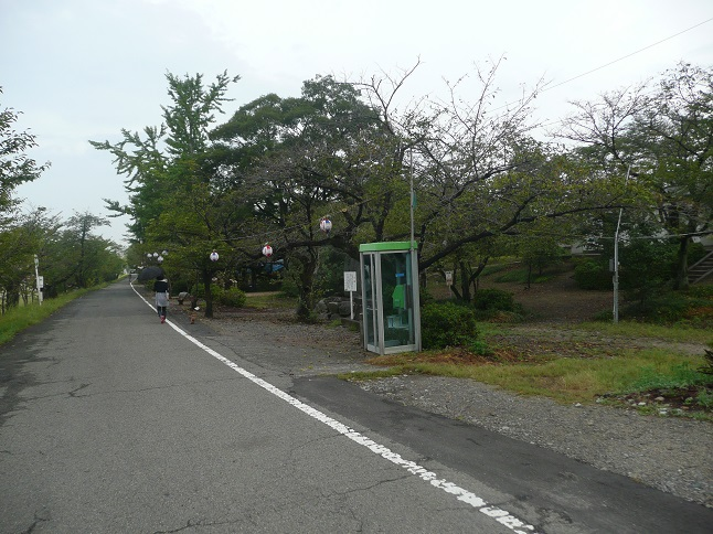 P1540026.jpg