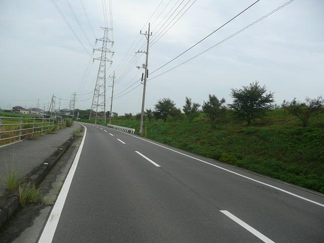 P1540064.jpg