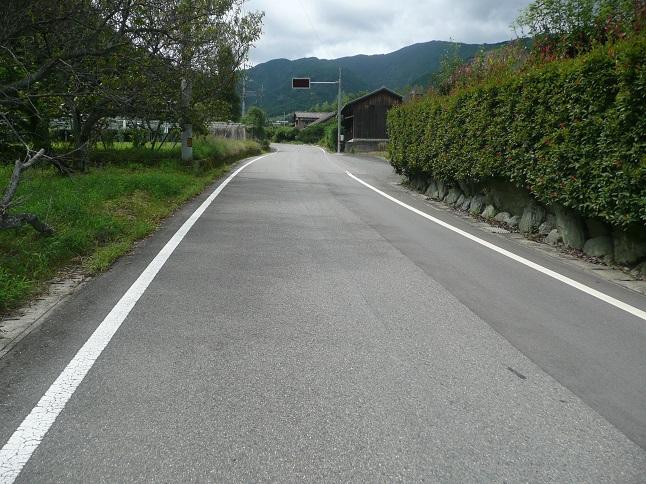 P1540087.jpg