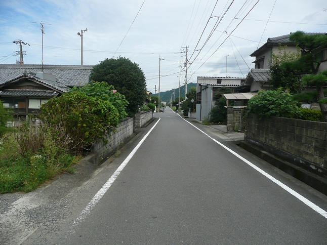 P1540117.jpg