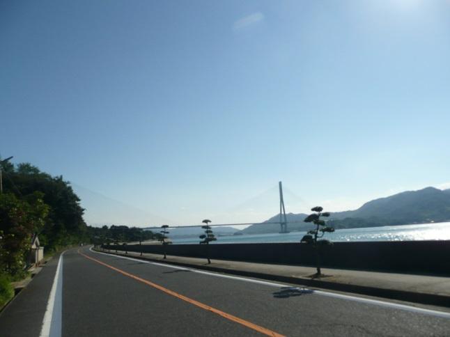 P1600107.jpg