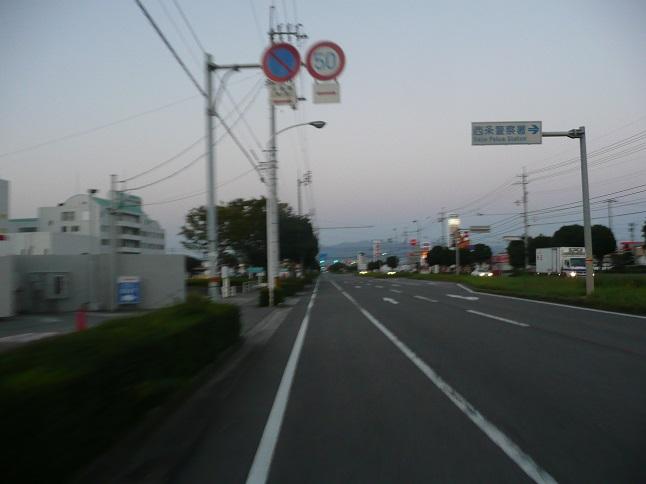 P1600130.jpg