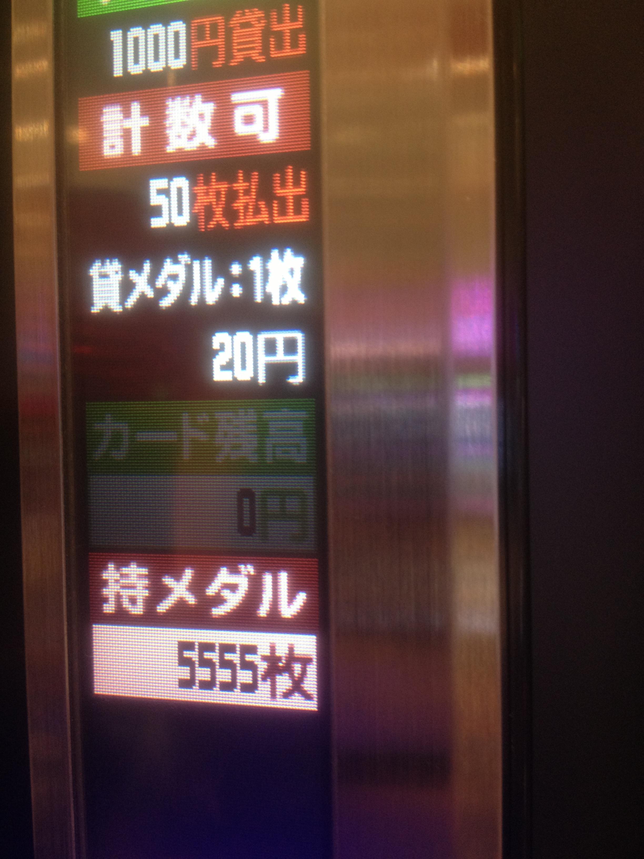 113.jpg