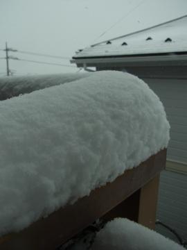 snowcoverage