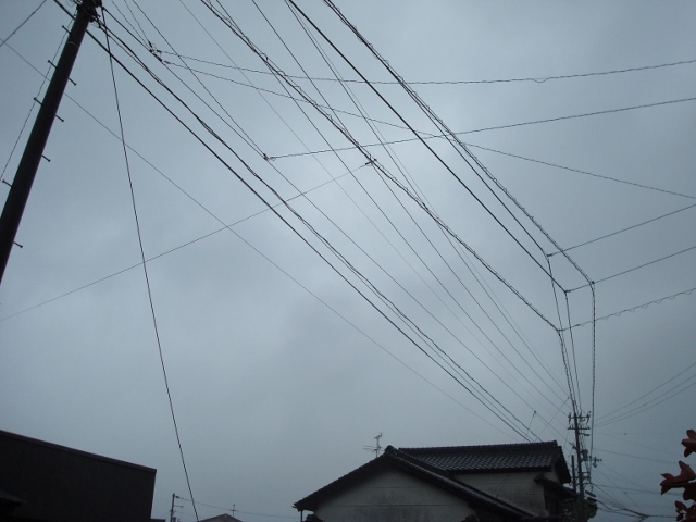 DSC03911 (640x480)