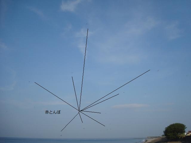 2013.8.6 赤とんぼ