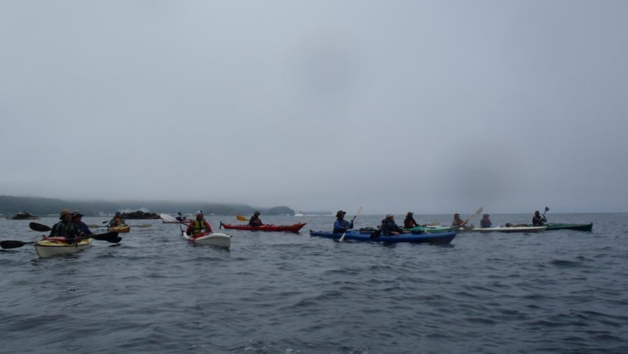 shiretoko-kayak010.jpg