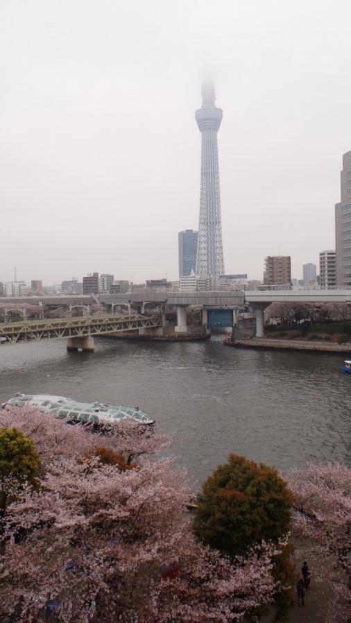 tokyo010.jpg