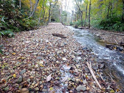 011_2012-01上流より上昇河床をのぞむ[1]