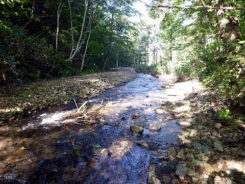 012_2013-01上流より上昇河床をのぞむ[1]