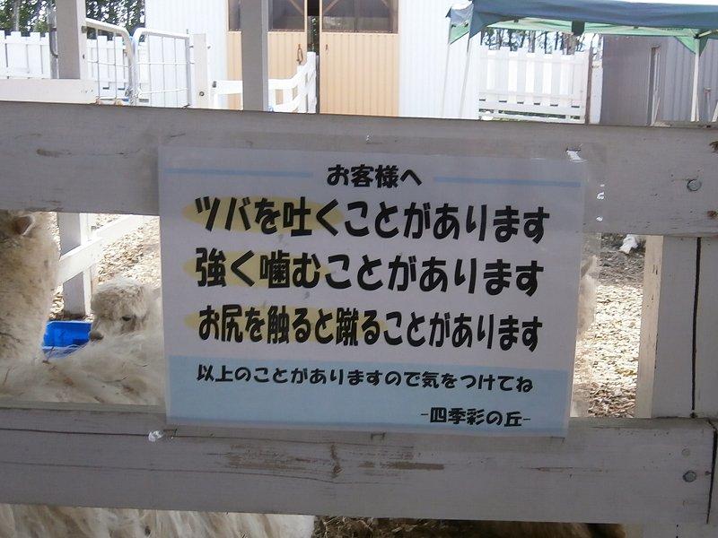 biei_09.jpg