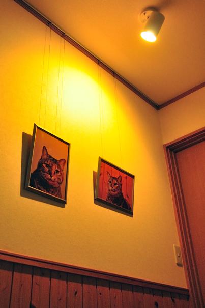 gallery minmi