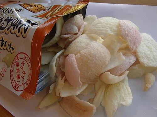 野菜チップ販売開始 (8)