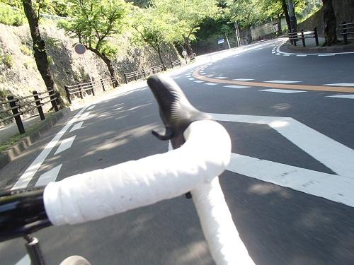 桜山 (9)