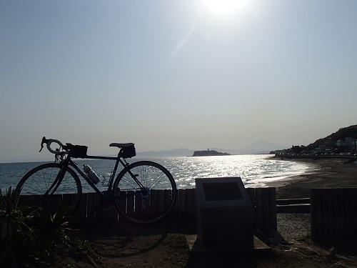 桜山 (11)