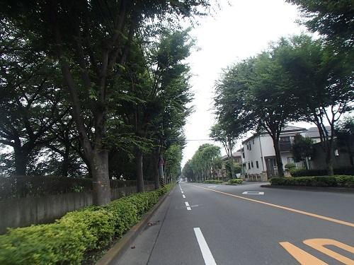 高崎クリア (13)