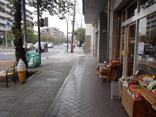 雨のキャンペーン (1)