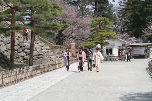 鶴ヶ城 桜 4 17 26