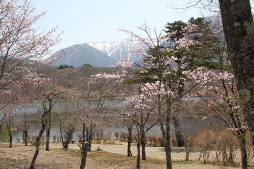 観音沼森林公園 0509 004