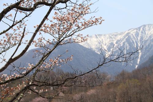 観音沼森林公園 0509 001
