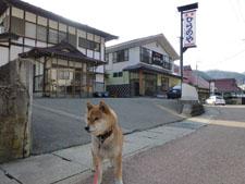 yunokamionsen49236.jpg