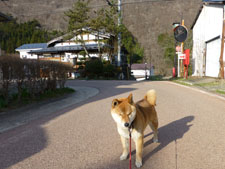 yunokamionsen49239.jpg