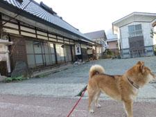 yunokamionsen49241.jpg