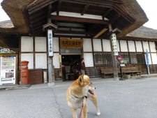 yunokamionsen49276.jpg