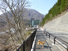 yunokamionsen49306.jpg