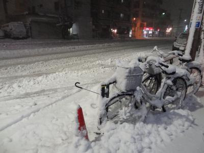 東京で大雪