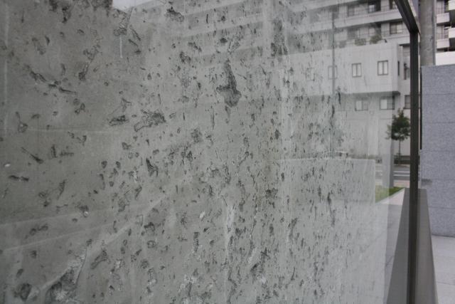 IMG_8280 ガラスの暴風(640x427)