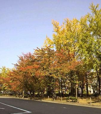 東本願寺の前