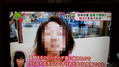20130828_104431_1.jpg