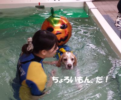20131027_suisui6.jpg