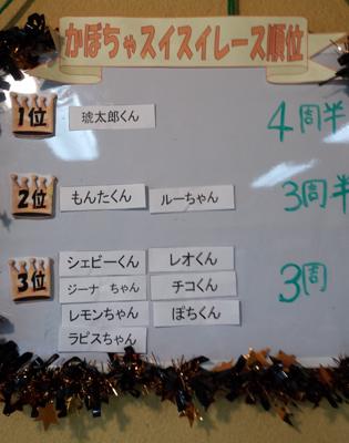 20131027_suisui8.jpg
