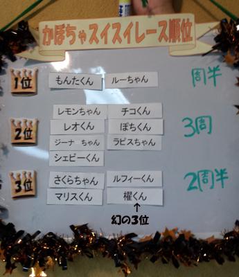 20131027_suisui9.jpg