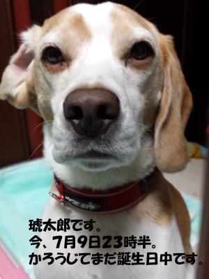 kotaro20130709_1.jpg