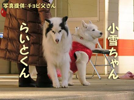 http://ameblo.jp/wortzweit/