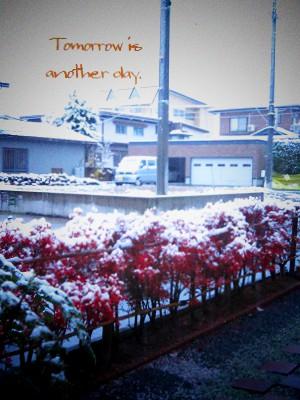 2013 初雪 翌朝