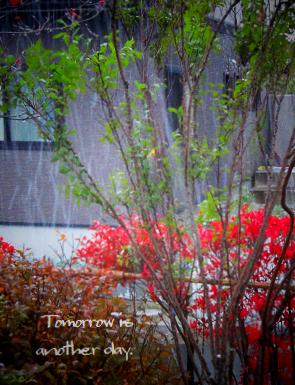 2013 初雪