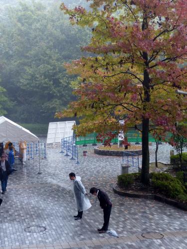 20131103徳島戦2